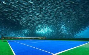 underwater-stadium4